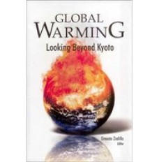 Global Warming : Looking Beyond Kyota